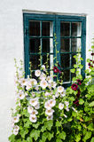 Summer Flowers At A Window Stock Photos