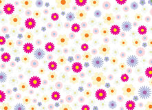 Summer_flowers_background Fotografie Stock Libere da Diritti