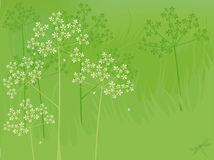 Summer flowers background. Green natures background with flowers and dragonfly Stock Photography
