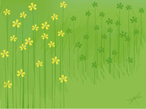 Summer flowers background. Green natures background with flowers and dragonfly Stock Photo
