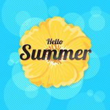 Summer Flowers Background or Summer floral Design on blue backgr. Ound Stock Image