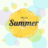 Summer Flowers Background or Summer floral Design on colorful ba. Ckground Royalty Free Stock Image