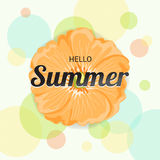 Summer Flowers Background or Summer floral Design on colorful ba. Ckground Royalty Free Stock Photos