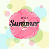 Summer Flowers Background or Summer floral Design on colorful ba. Ckground Stock Images