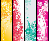 Summer flowers banners Royalty Free Stock Photos