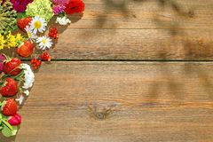 Summer Flowers and Berries on Grunge Wood Table Stock Images