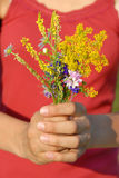 Summer flowers bouquet Royalty Free Stock Photo