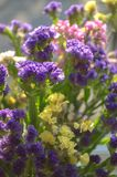 Yellow Pink Purple and white summer flowers in the bouquet closeup royalty free stock photo