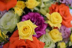 Amazing flowers summer colors orange and yellow roses and yellow. Summer flowers bouquet roses yellow and orange happiness macro background royalty free stock photo