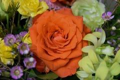 Amazing flowers summer colors orange and yellow roses and yellow. Summer flowers bouquet roses yellow and orange happiness macro background stock images