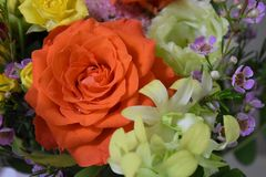 Amazing flowers summer colors orange and yellow roses and yellow. Summer flowers bouquet roses yellow and orange happiness macro background stock photography