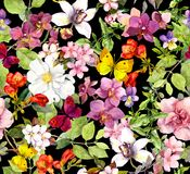 Summer flowers, butterflies on black background. Chic floral pattern. Watercolor royalty free illustration