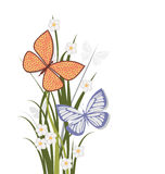Summer flowers and butterflies. Over grasses bordering page with copyspace to side Stock Images