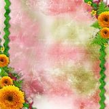 Summer flowers color background Stock Images