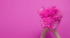 Summer flowers composition with girl hand isolated on pink background. Mother and women day. Valentine holidays concept. Top view. And copy space. Banner and stock images