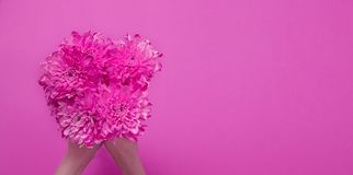 Summer flowers composition with girl hand  on pink background. Mother and women day. Valentine holidays concept. Top view. And copy space. Banner and mock up stock image