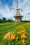 Summer flowers with duch windmill on background Royalty Free Stock Photo