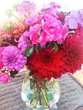 Summer flowers. Flowers from the garden in a glass vase Stock Images