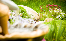 Summer flowers and garden waterfall Royalty Free Stock Photo