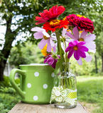 Summer flowers. And green polka dot retro cup in a garden Stock Images