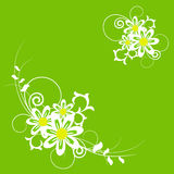 Summer flowers and herbs ornate background. Summer flowers and herbs ornate green background vector illustration