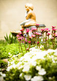Summer flowers and home garden waterfall Royalty Free Stock Photo