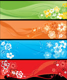 Summer flowers horizontal banners Stock Photo