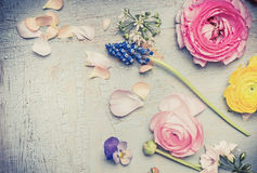 Summer flowers on light vintage shabby chic background, top view, copy space Stock Image