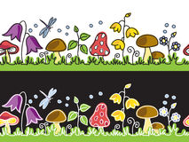 Summer flowers  and mushrooms on meadow Stock Images