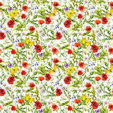 Summer flowers poppies, chamomile, grass. Seamless pattern. Watercolor. Summer flowers poppies, chamomile and grass. Seamless pattern. Watercolor Royalty Free Stock Photo