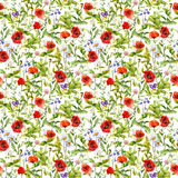 Summer flowers poppies, chamomile, grass. Seamless pattern. Watercolor. Summer flowers poppies, chamomile and grass. Seamless pattern. Watercolor Stock Photo