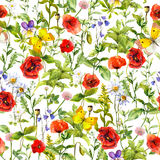 Summer flowers poppies, chamomile, grass. Seamless pattern. Watercolor. Summer flowers poppies, chamomile and grass. Seamless pattern. Watercolor Royalty Free Stock Photos