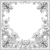 Summer flowers: poppy, daffodil, anemone, violet, in botanical. Style with vintage rococo frame for text. Stock line vector illustration. Outline hand drawing Royalty Free Stock Image