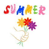 Summer Flowers Represents Flora Blooming And Petals Royalty Free Stock Photo