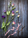 Summer flowers with ribbon and  scissors on blue wooden table Stock Image