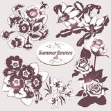 Summer flowers set Stock Photos