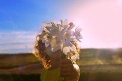 Summer flowers. Summer flowers. A bouquet of wildflowers in the hands of a little girl. royalty free stock image