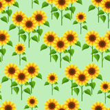 Summer flowers sunflowers seamless pattern Stock Photos