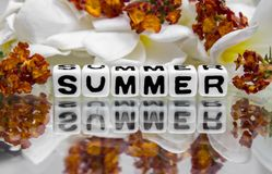 Summer with flowers Stock Images
