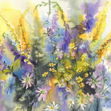 Summer flowers watercolor background Stock Photo