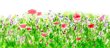 Summer Flowers Watercolor, Border Seamless Pattern Stock Image