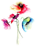 Summer flowers. Watercolor illustration of Summer flowers Royalty Free Stock Image