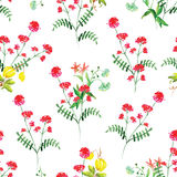 Summer flowers watercolor seamless vector pattern Royalty Free Stock Images