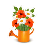 Summer flowers in a watering can. Royalty Free Stock Image