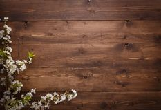 Summer Flowers on wood texture background with copyspace Royalty Free Stock Image