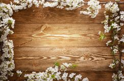 Summer Flowers on wood texture background with copyspace Stock Photo