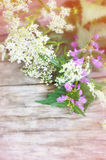 Summer flowers on wooden background Stock Photography