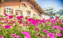 Summer village Kitzbuhel , Austria. Summer flowers and wooden house in village Kitzbuhel , Austria royalty free stock photo