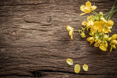 Summer flowers on a wooden old background. Stock Image