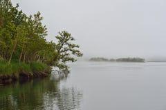 Summer foggy landscape with river. Kamchatka Peninsula, East Coast stock images